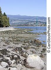 Vancouver Harbour Low Tide