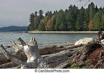 vancouver, shoreline, baia, inglese