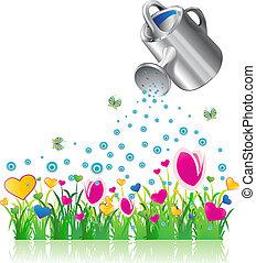 vanding kunne, og, valentine, blomster