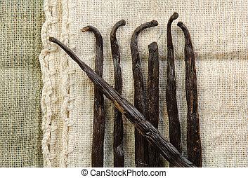 Vanilla Beans - Vanilla beans laying on woven fabric in...