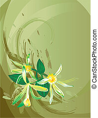 Vanilla Flower, editable vector illustration
