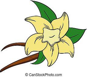 Vanilla set in cartoon style