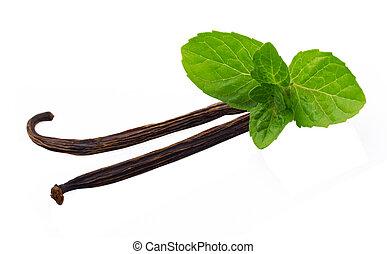 Vanilla sticks and leaf of mint