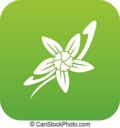 Vanilla sticks with a flower icon digital green
