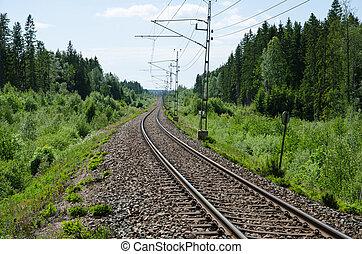Vanishing railway tracks in a green summer landscape