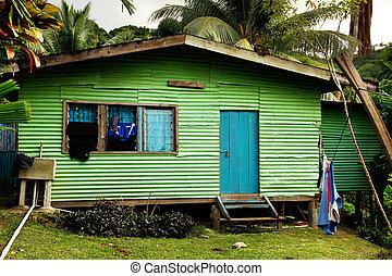 vanua, isla, fiji, casa, levu, local