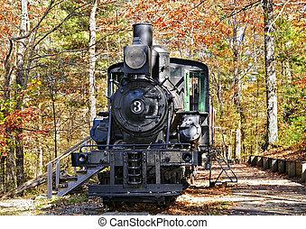 vapor, locomotora, en la exhibición