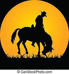 vaquero, en, el, caballo salvaje