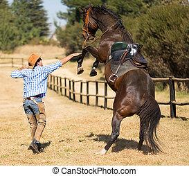 vaquero, tratar, al control, el suyo, caballo