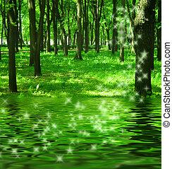 varázslatos, erdő, közel, a, folyó