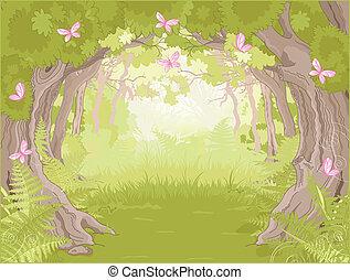 varázslatos, erdő, tisztás
