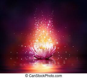 varázslatos, virág, képben látható, víz