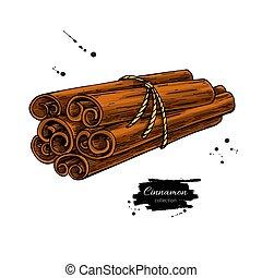 vara canela, amarrada, grupo, vetorial, drawing., mão, desenhado, sketch.