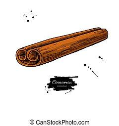 vara canela, vetorial, drawing., mão, desenhado, sketch., sazonal, alimento