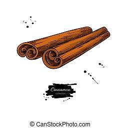 vara canela, vetorial, drawing., mão, desenhado, sketch.