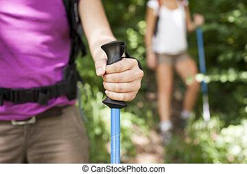 vara, jovem, floresta, segurando, trekking, mulheres