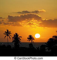 varadero, zachód słońca, kuba