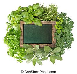 variëteit, bord, keukenkruiden, groene, leeg, fris