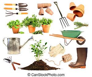 variëteit, van, voorwerpen, voor, lente, aanplant, op wit