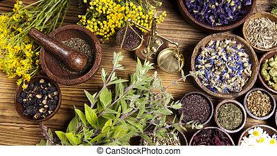variado, natural, médico, hierbas, y, mortero