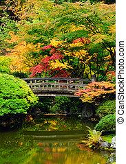 variado, otoño, colores