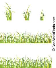 variation of grass - vector illustration of green grass