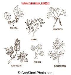 Varicose vein herbal remedies