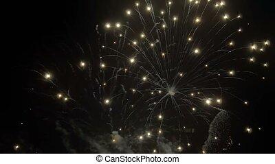 Varied Colorful Fireworks - Different Noisefree Fireworks on...