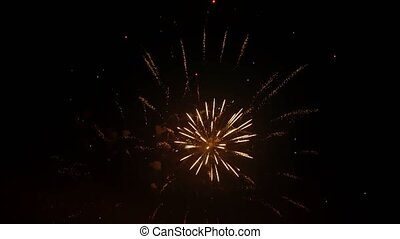 Varied Colorful Fireworks - Different Noisefree Fireworks on...