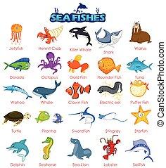 variedad, de par en par, mar, pez