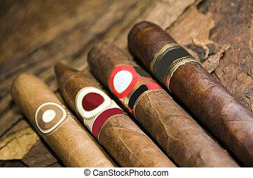 variedad, mano, arrollado, cigarros, en, hoja de tabaco,...