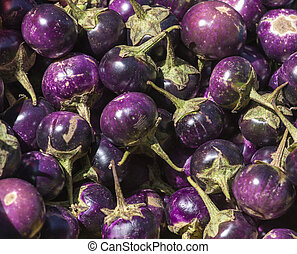 Varieties of Eggplant As A Background