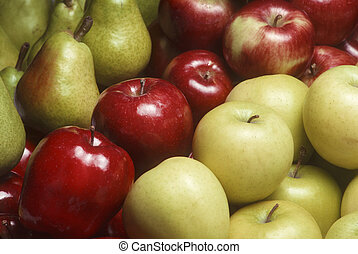 Variety of apples and Bartlet pears