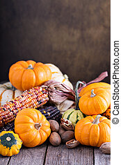Variety of colorful decorative pumpkins on a table