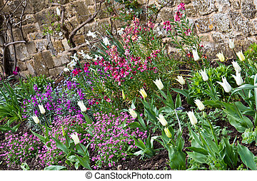 Variety of colorful springtime flowers in bloom in a garden