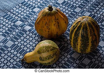 variety of decorative pumpkins