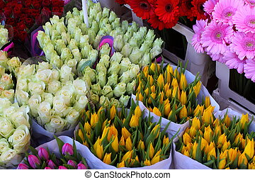 Variety of flowers sold in the market in Amsterdam