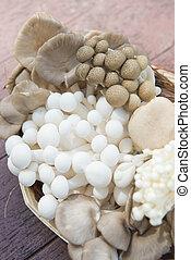 variety of fresh mushrooms in a basket