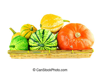 Variety of pumpkins in a basket isolated on white