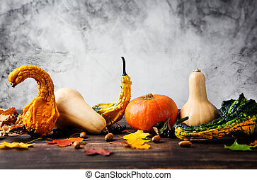 Variety of pumpkins with autumn leaves Copy space