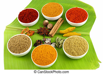 Variety of spicy powders