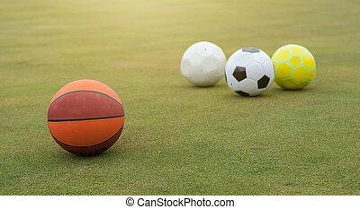 vario, deportes, pelotas, en, campo de la hierba