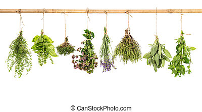 varios fresh herbs isolated on white