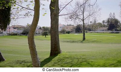 Various aged trees scattered on golf course - Various trees...