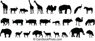 various animals silhouettes