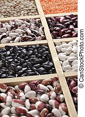 Various beans in box - Various legume grains close-up in...