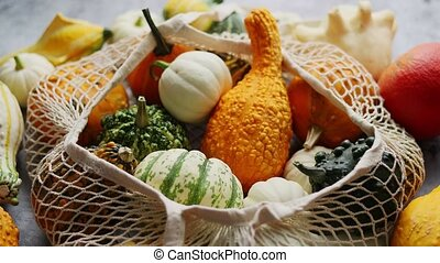 Various colorful mini pumpkins in string shopping bag. ...
