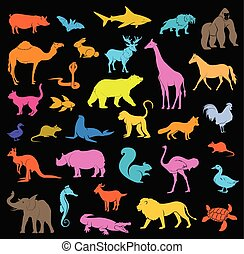 Various Colorful Zoo Mammal Shapes and Silhouettes Set