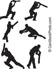 various cricket shots