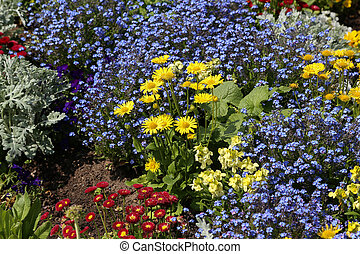 Various flowers on a bed in a city park